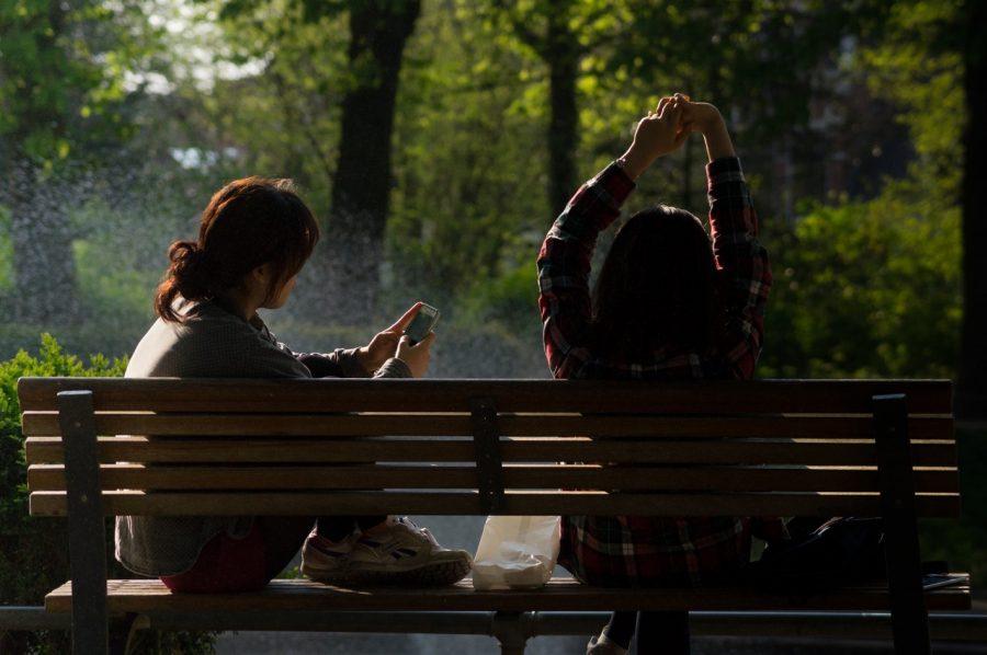 photograph+by+skitterphoto+via+pexels.com+-+CC0+license