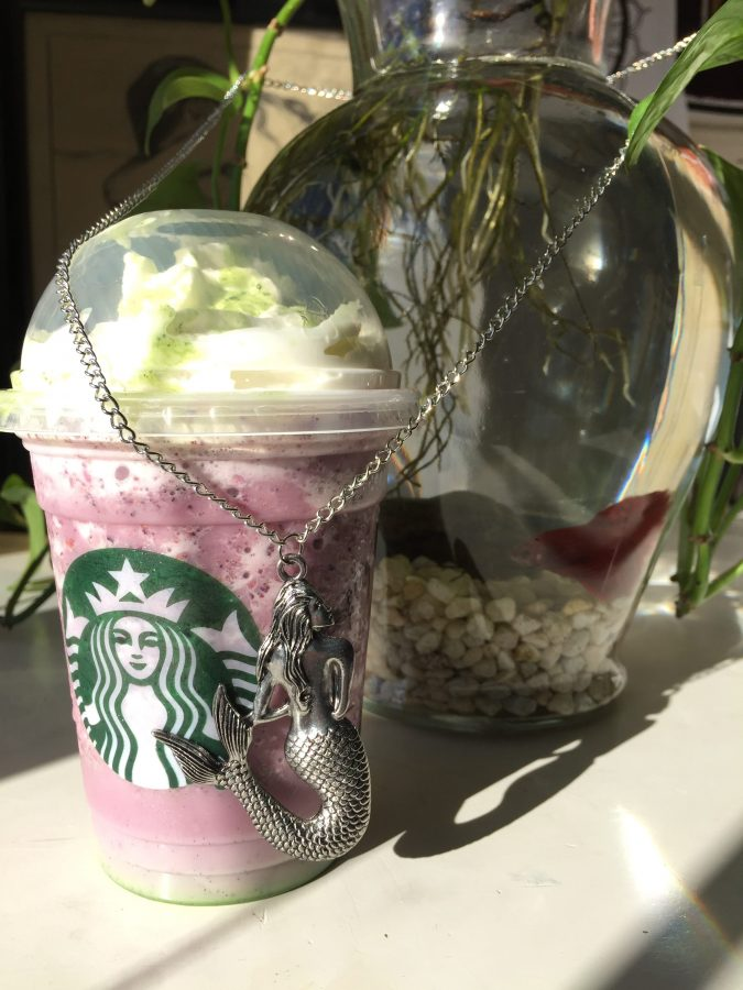 The strange appearance of this frappuccino has my beta fish, Romeo, dazzled. - photograph by Kasey Charron
