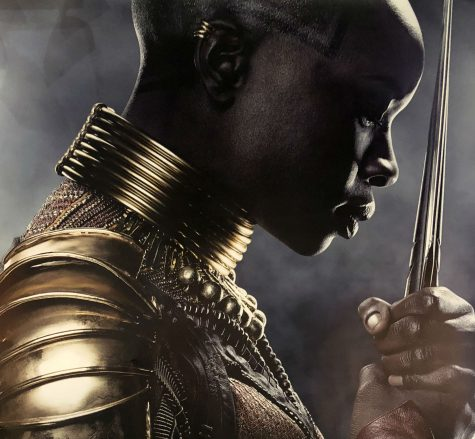 Black Panther poster - photographed by Lauren Eschenbrenner