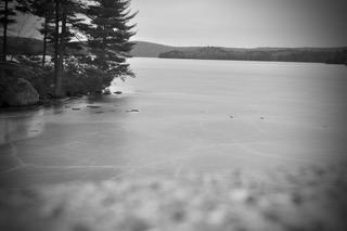 Logan Haynes observes local beauty through the lens of his camera.