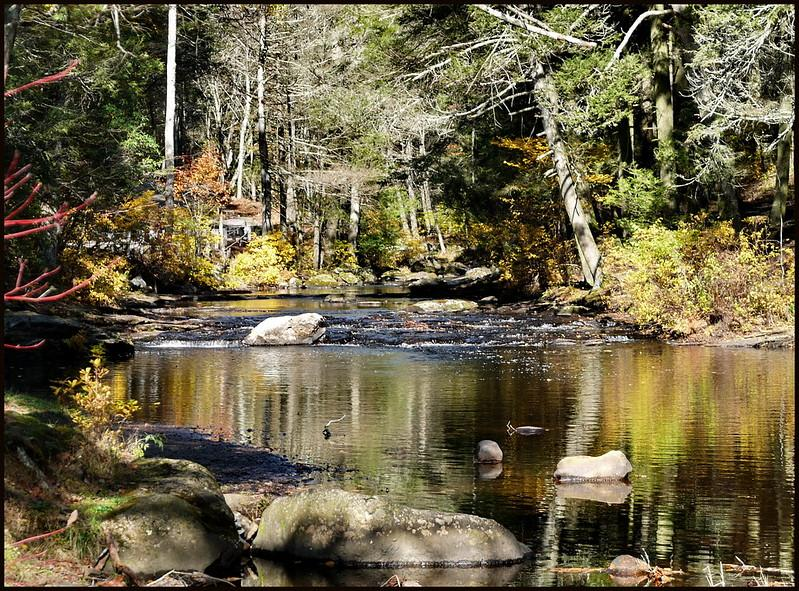 Eight Mile River in Devils Hopyard State Park, East Haddam CT. Tom Henthorn/ flickr