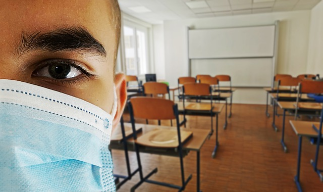 The pandemic has forced both teachers and students to constantly adapt to new styles of teaching and learning. image by Alexandra Koch/Pixabay